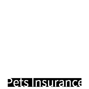 YAS寵物保險
